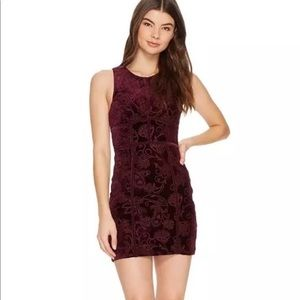 Free People Women SZ L Plum Burnout Bodycon Dress